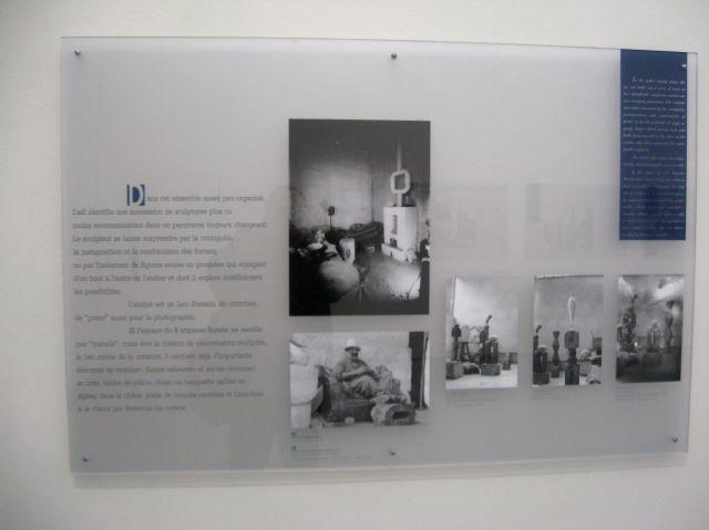 IMG_1920.jpg